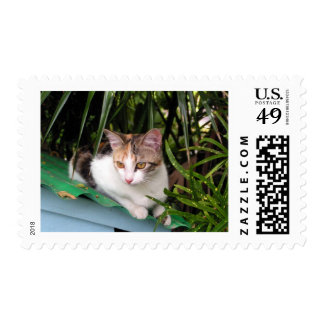 Hemingway Cat Postage