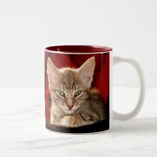 Hemingway Kitten Mug