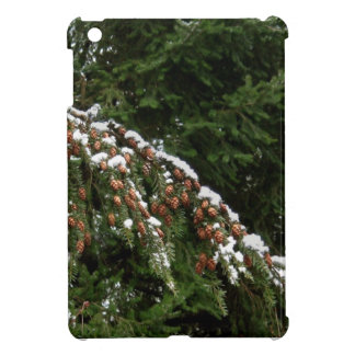 Hemlock con la nieve de la tierra baja - Olympia W