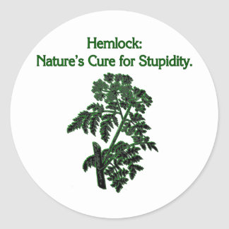 Hemlock: Cure For Stupidity Classic Round Sticker