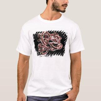 Hemoglobin T-Shirt