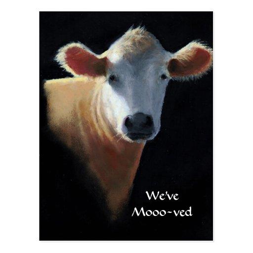 Hemos movido la vaca (de Mooo-ved) en pastel Postal