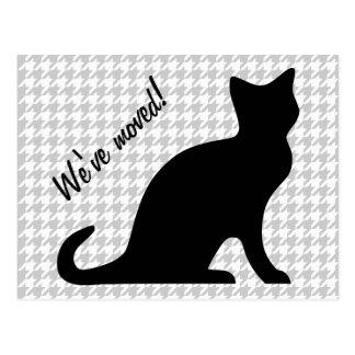 Hemos movido las postales con el pequeño gato