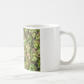 Hen and chicks (Crassulaceae) Classic White Coffee Mug