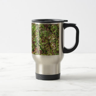 Hen and chicks (Crassulaceae) 15 Oz Stainless Steel Travel Mug