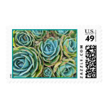 Hen and chicks stamp