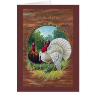 Hen and Tom Turkey Vintage Thanksgiving Greeting Card