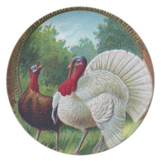 Hen and Tom Turkey Vintage Thanksgiving Party Plate