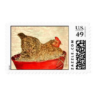 hen chicken farm animal postage stamps