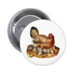 Hen Chicks Babies and Eggs Pins