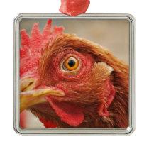 Hen of farm metal ornament