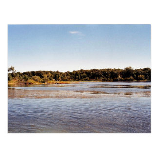 Hennepin Marsh South Coastline at Detroit River In Post Card