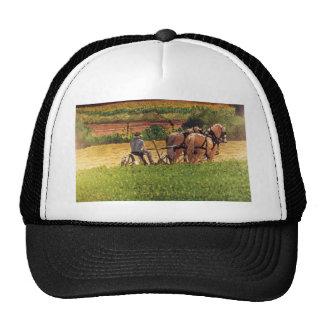 Heno del corte gorras