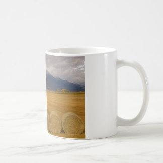 Heno Rolls Tazas De Café