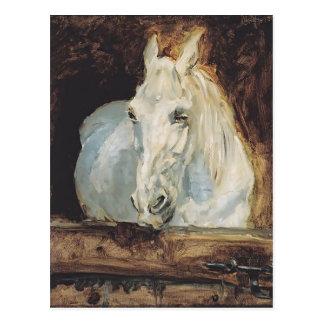Henri de Toulouse-Lautrec- White Horse Postcards