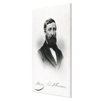 Henry David Thoreau Stretched Canvas Prints