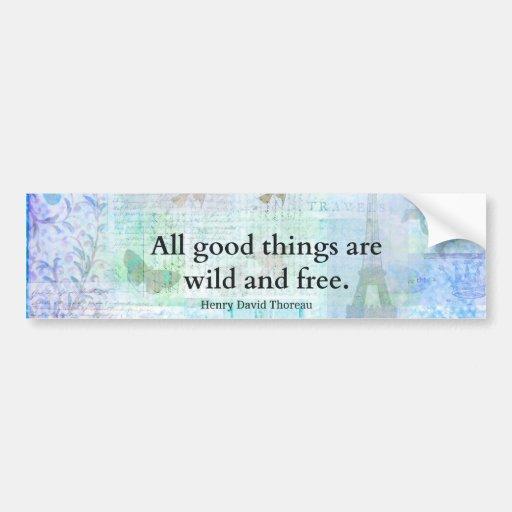 Henry David Thoreau Inspirational FREEDOM quote Bumper Sticker