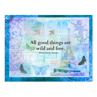 Henry David Thoreau Inspirational FREEDOM quote Postcard