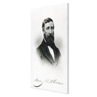 Henry David Thoreau Lienzo Envuelto Para Galerías