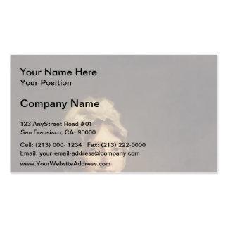 Henry Raeburn- Ann Fraser, Mrs. Alexander Tytler Double-Sided Standard Business Cards (Pack Of 100)