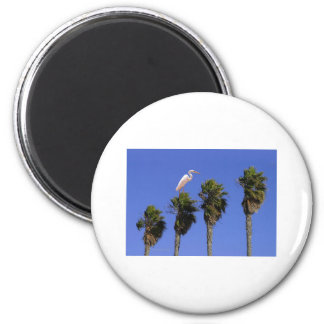 Henry the Heron+PalmTrees Magnet