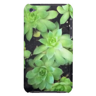 Hens and Chicks Barely There iPod Cases