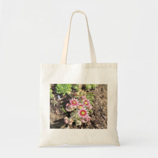 Hens and Chicks Flowers Bag
