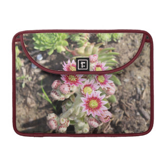 Hens and Chicks Flowers Macbook Pro Sleeve