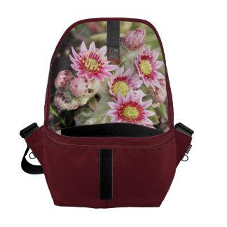 Hens and Chicks Flowers Messenger Bag