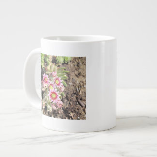 Hens and Chicks Flowers Specialty Mug