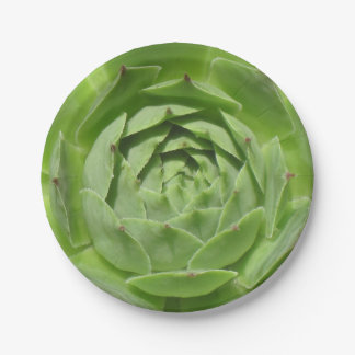 Hens and Chicks Paper Plate
