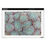 """Hens and Chicks Plant Decal For 17"""" Laptop"""