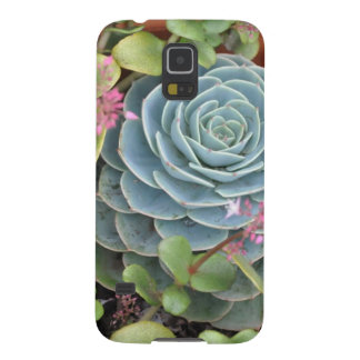 Hens and Chicks Plant Galaxy S5 Case
