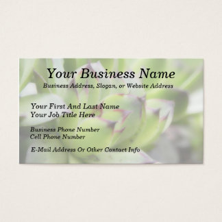 Hens And Chicks - Sempervivum Business Card