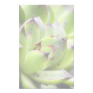 Hens And Chicks - Sempervivum Personalized Stationery