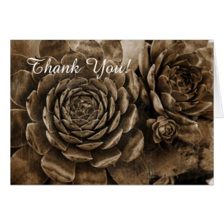 Hens and Chicks Succulent Garden Thank You Card Note Card