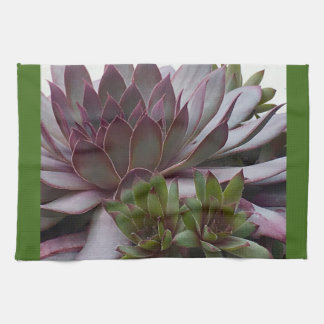 Hens and Chicks Towels
