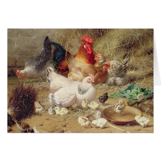 Hens roosting with their chickens card