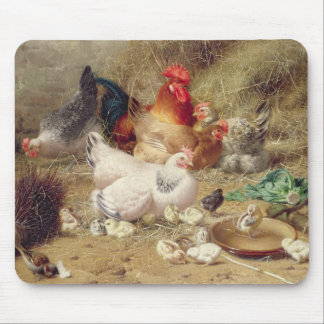 Hens roosting with their chickens mouse pad