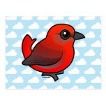 Hepatic Tanager Postcards