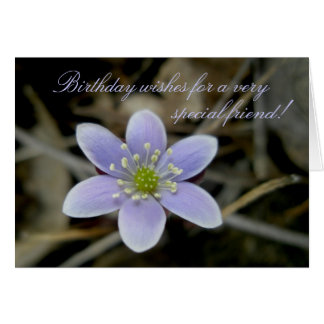 Hepatica Special Friend Birthday Card