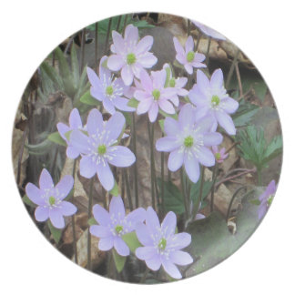 Hepatica Wildflower Plant Party Plates