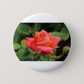 Her Majesty Pinback Button