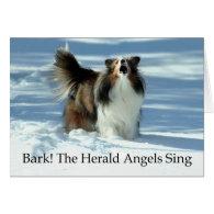 Herald Sheltie Card