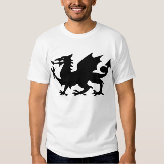 Heraldic Dragon Long Sleeved Tee