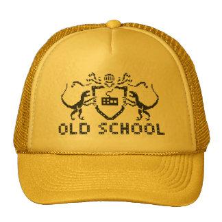 Heraldic Pixel Dinosaur Hat