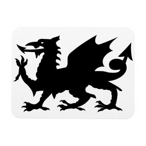 Heráldica del dragón iman rectangular