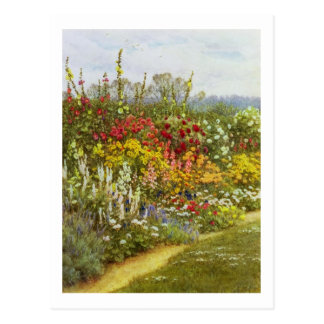 Herb and Flower Pathway Postcard