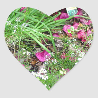 Herb collection chives photograph art heart sticker