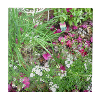 Herb collection chives photograph art ceramic tile